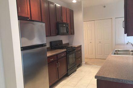 301 Riverwalk Place - Kitchen